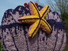 Blumenkorso Keukenhof-11
