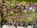 In der Hochsaison besuchen täglich bis zu 8000 Besucher die Alhambra. Sie ist eine der meistbesuchten Touristenattraktionen Europas und seit 1984 Weltkulturerbe.
