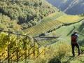 Herbst in Südtirol (4)