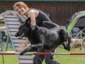 Hundesport12