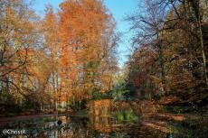 Christen_Herbst15