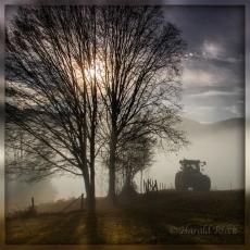 Rieck_Herbst15