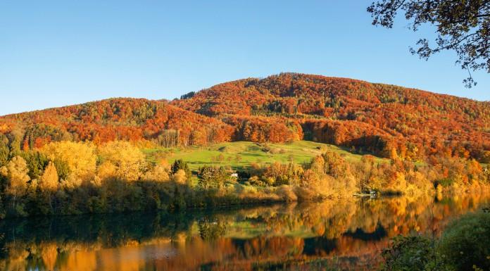 Beitragsbild_Herbst15